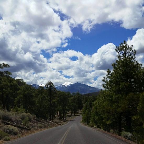 SanFranciscoPeaks_Arizona_Zink